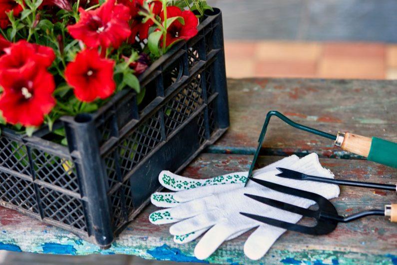 Jakie akcesoria ogrodnicze najlepiej się sprawdzą?